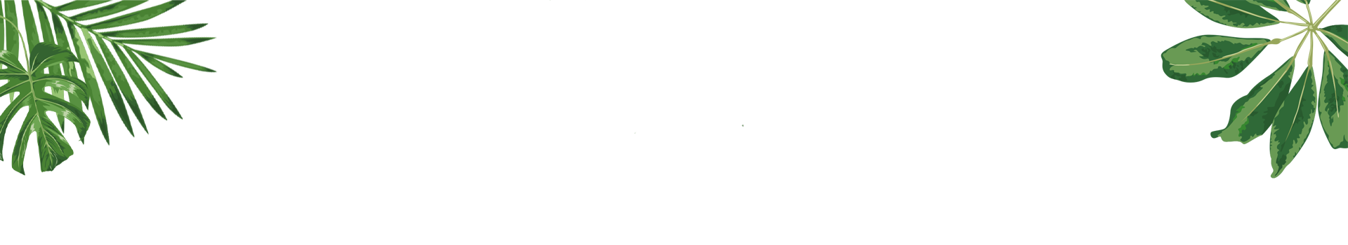 Gelie-Cure System Header-image